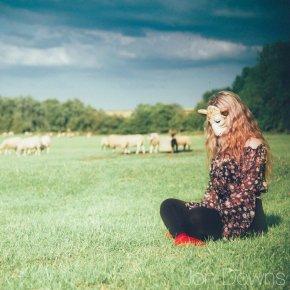 Feeling a bit sheepish